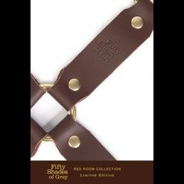 Fifty Shades of Grey - Red Room Hog Tie