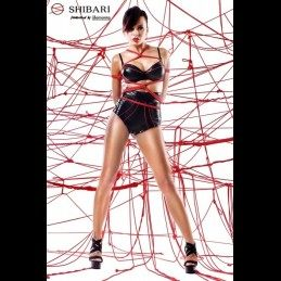 DEMONIQ - SHIBARI SHINJU PACK