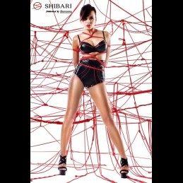 DEMONIQ - SHIBARI SHINJU PACK